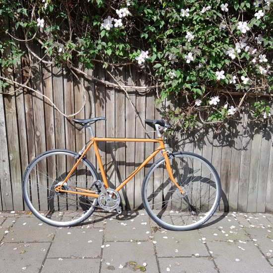 Orange Harbour Townbike